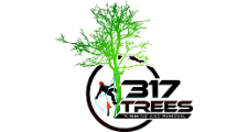 317 Trees in Indianapolis, IN