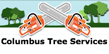 Columbus Tree Services in Columbus, OH