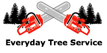 Everyday Tree Service in Maple Grove, MN