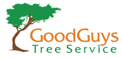 Good Guys Tree Service in Austin, TX