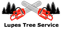 Lupes Tree Service