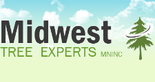 Midwest Tree Experts MN