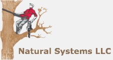 Natural Systems LLC in Southington, CT