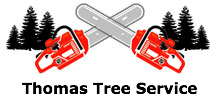 Thomas Tree Service in Arvada, CO