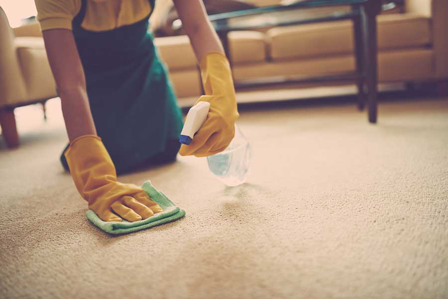 Carpet And Rug Cleaning Tips