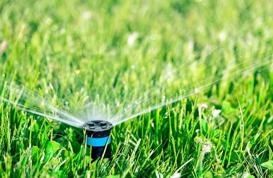 watering lawn with sprinkler